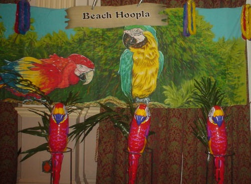 tropical game beach hoopla